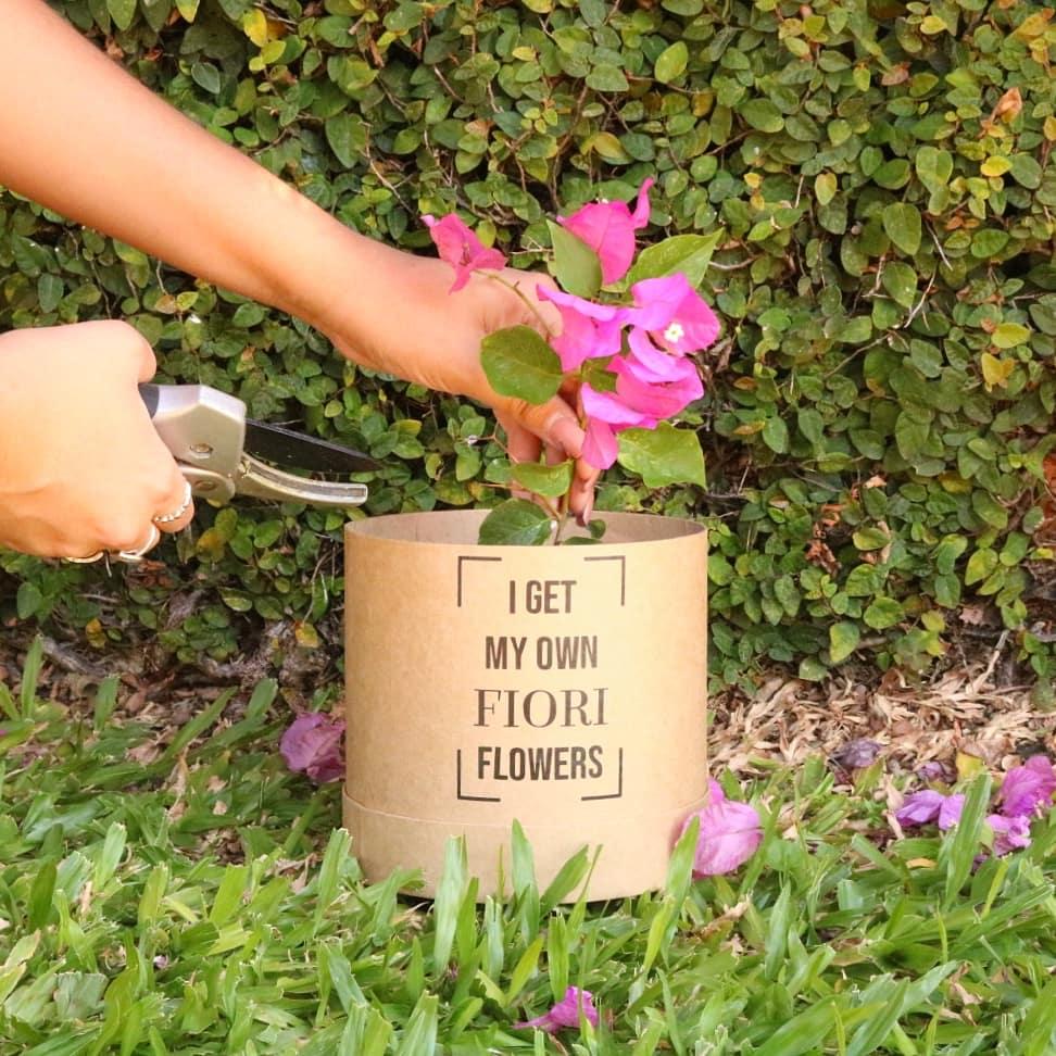 Fiori Con La S.Floreria Fiori On Twitter 3 Hacete La Florista Y Juga Con Las