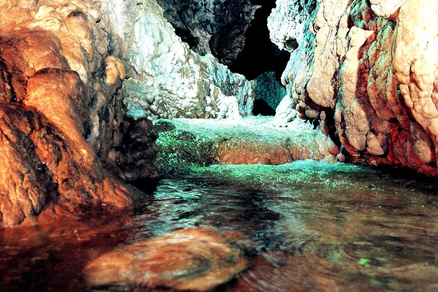 первую, дальнегорский район пещера лилия фото когда спелейший идеальнейший