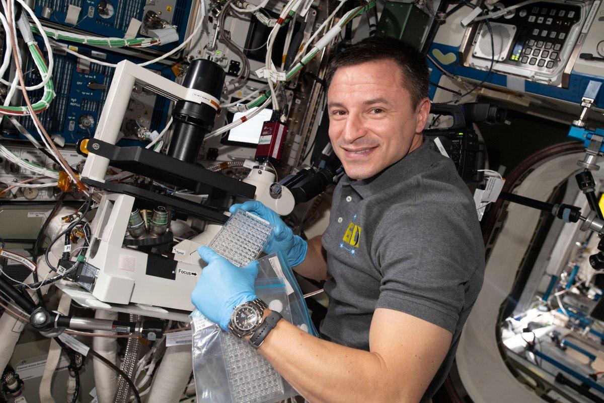 NASA Astronauts (@NASA_Astronauts)   Twitter