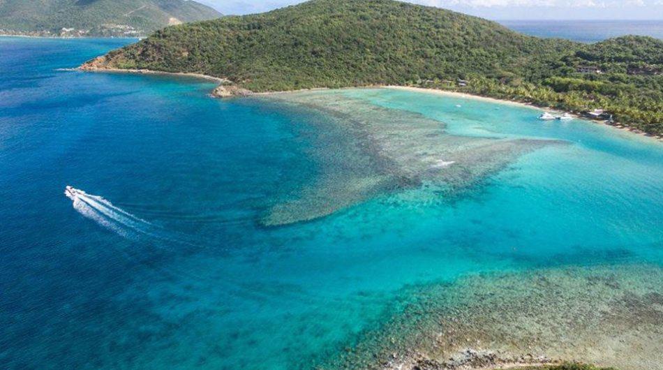miss british virgin islands 2020