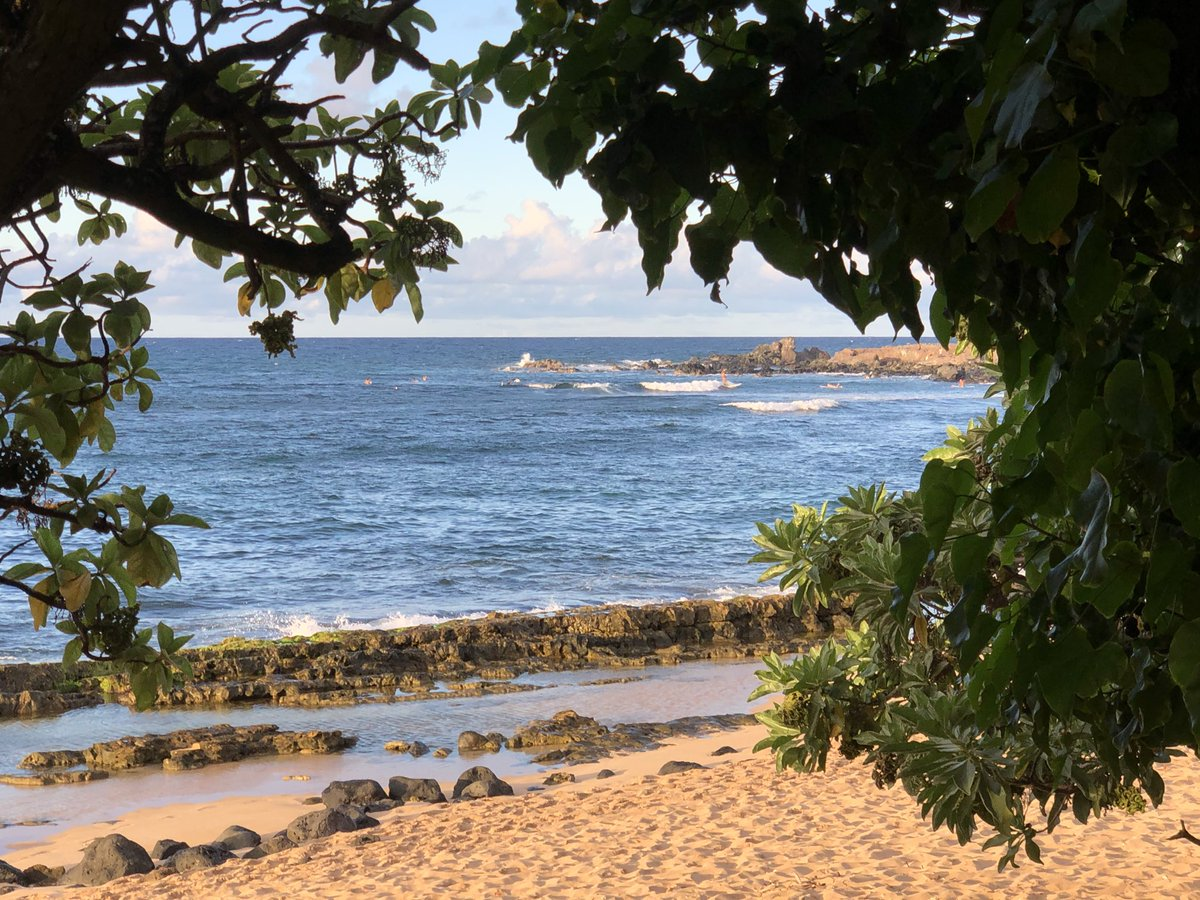 test Twitter Media - Windy and rough at Ho'okipa. #cmweather #Maui #Mauinokaoi https://t.co/qQJEMmwYo3