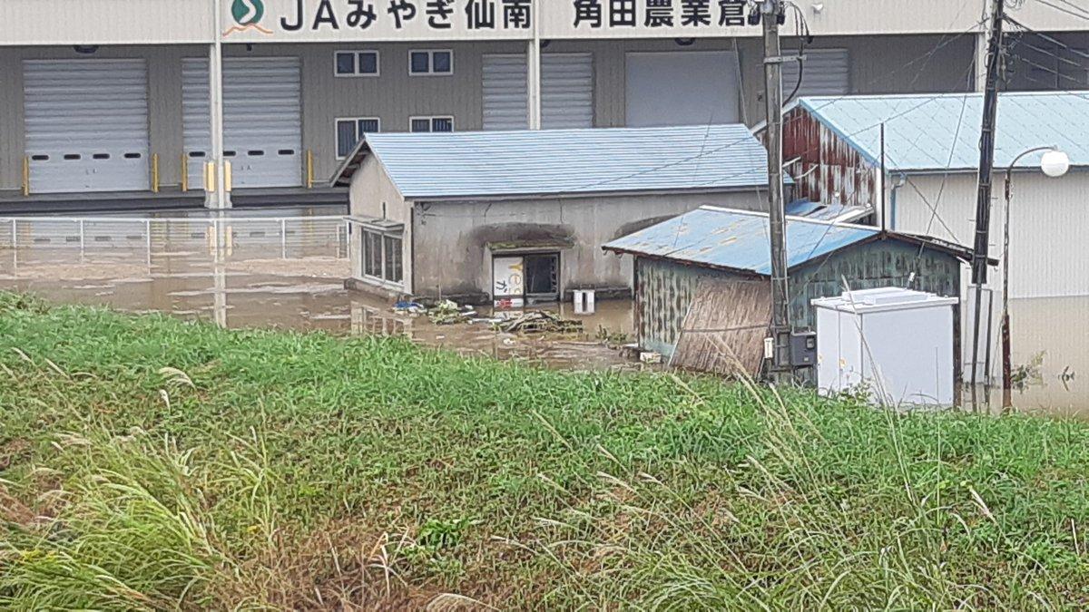 #台風19号 #宮城県角田市 #立憲民主党宮城県連合 #石垣のりこ 議員と角田市入り。 #JAみやぎ 仙南角田農協さんの近くに地域のかたが様子を見に来ていました。 昨日よりも水位が上がっていると心配。 収穫した米の倉庫であるライスセンター。中まで水が入っていませんように。 #岡本あき子