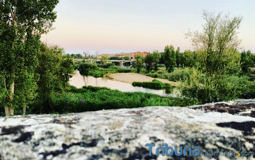 😍 Siempre hay una razón para seguir luchando. ¡Buenos días, #Salamanca! ¡Feliz martes a todos! 📸 @tnavarroig #PictureOfTheDay