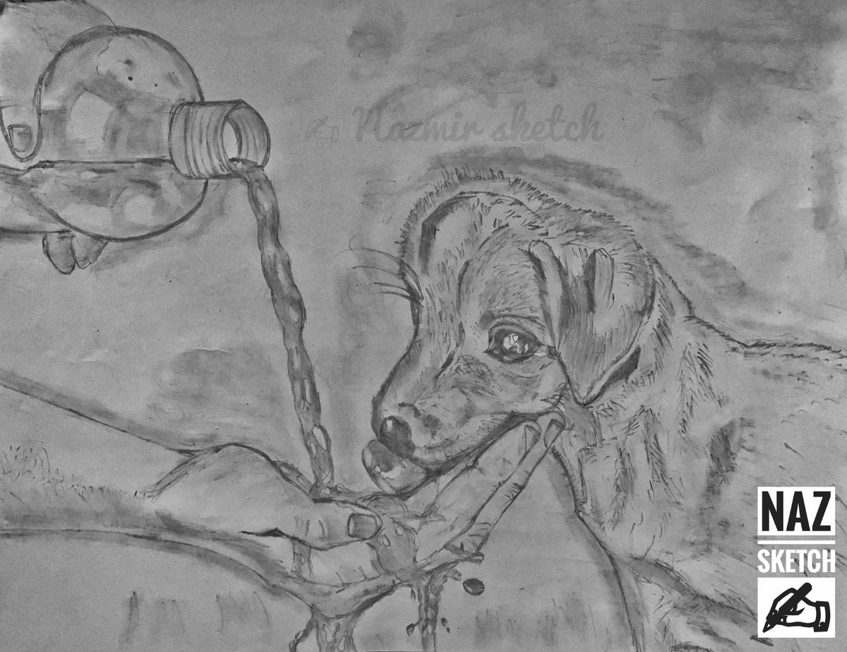 """Drawing Of The Day 🎨 NAZMIR SKTECH ✍   """" Be kind to every kind Not just   Mankind ...""""  #drawing_lover ❤ #Pencil_sketch #pencildrawing #naz_arts"""