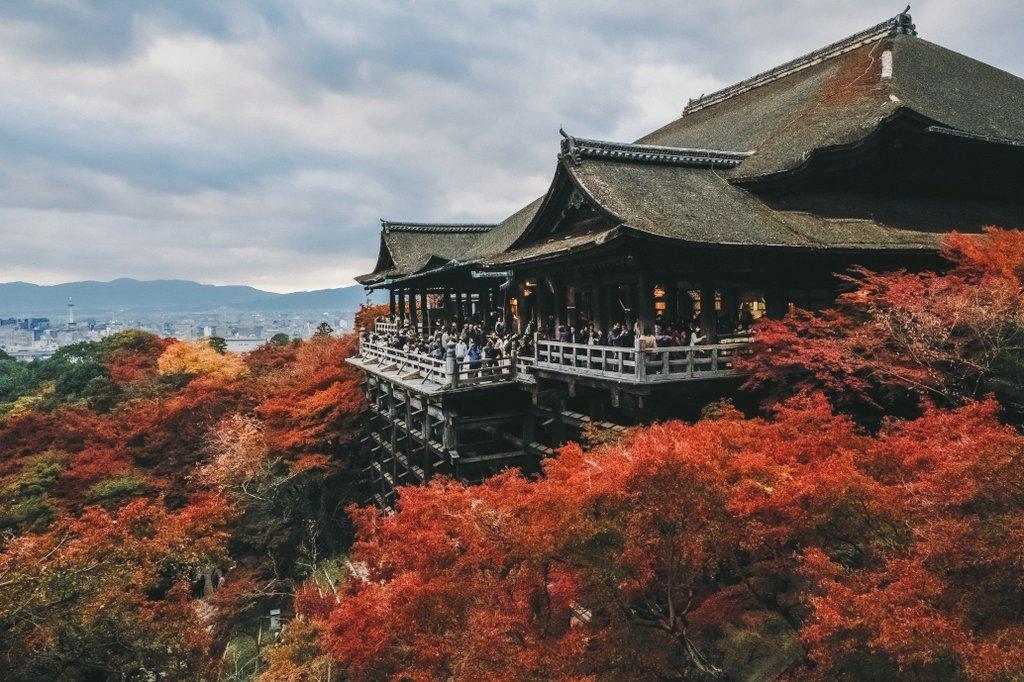 今年の秋は、どこに行こう。写真やってると日本の四季は宝だなって思う。もちろん写真やってなくても。みんなで守っていきたいね。