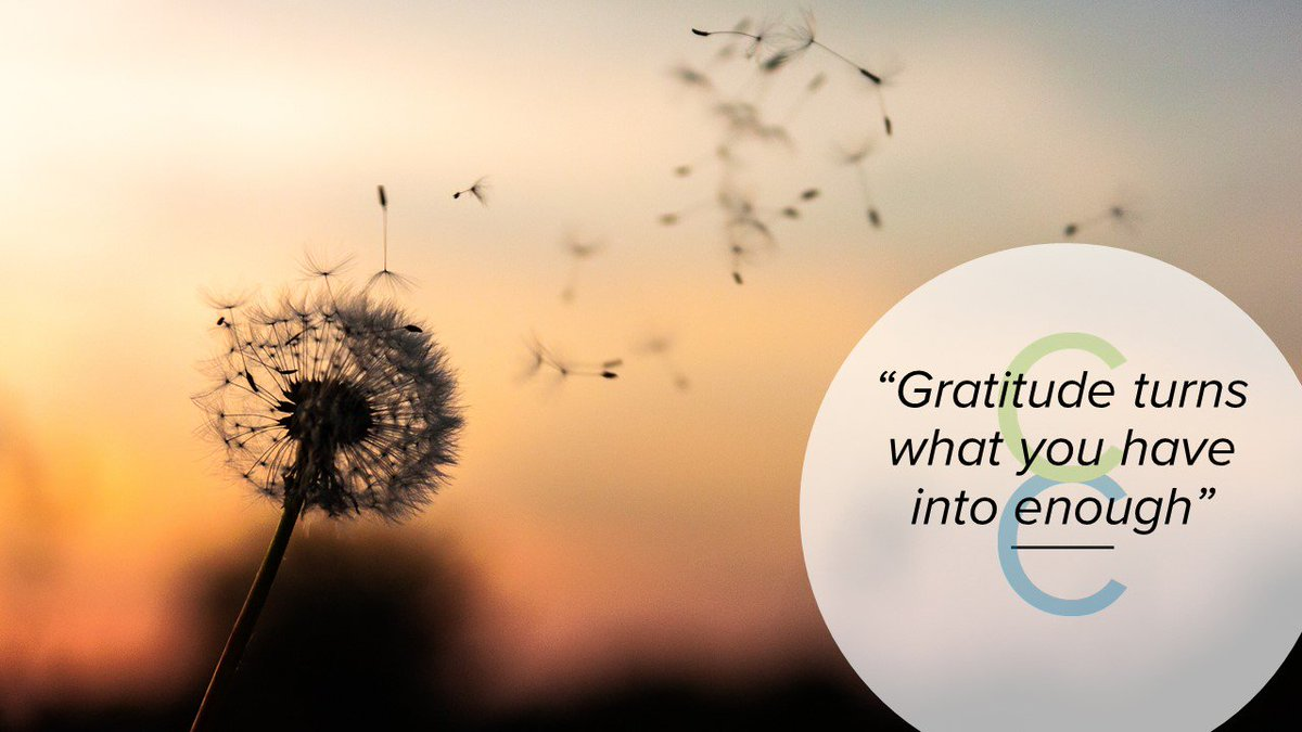 Getting into a habit of saying thank you, even quietly to yourself for all the things in your life that you are grateful for is proven to improve your mood and reduce stress. The proof is in the pudding! Try it today. #gratitude #celticcareers #mindfulness #mentalhealth https://t.co/HotXIYaSSM