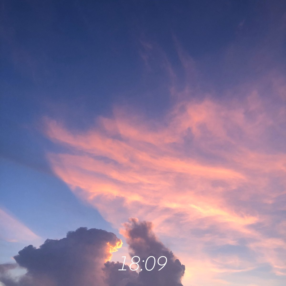 RT @mieuxakira: เรียงลำดับเวลาเปลี่ยนสีของเจ้าเมฆก๊อดซิล่า https://t.co/kPxTcOWruV