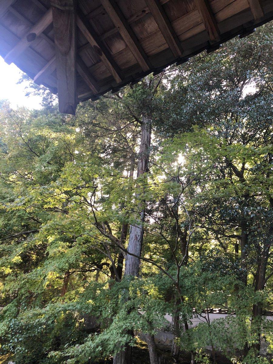 今日もたくさんのやり取りありがとうございました。  まずは、一人でも多くの方のご無事と平穏な日常に戻る日へ。  そして、現場で作業される方の安全を祈ります。  #明日のために  #政治は変えられる  #立憲民主党 #岡山 #鎌田桂輔