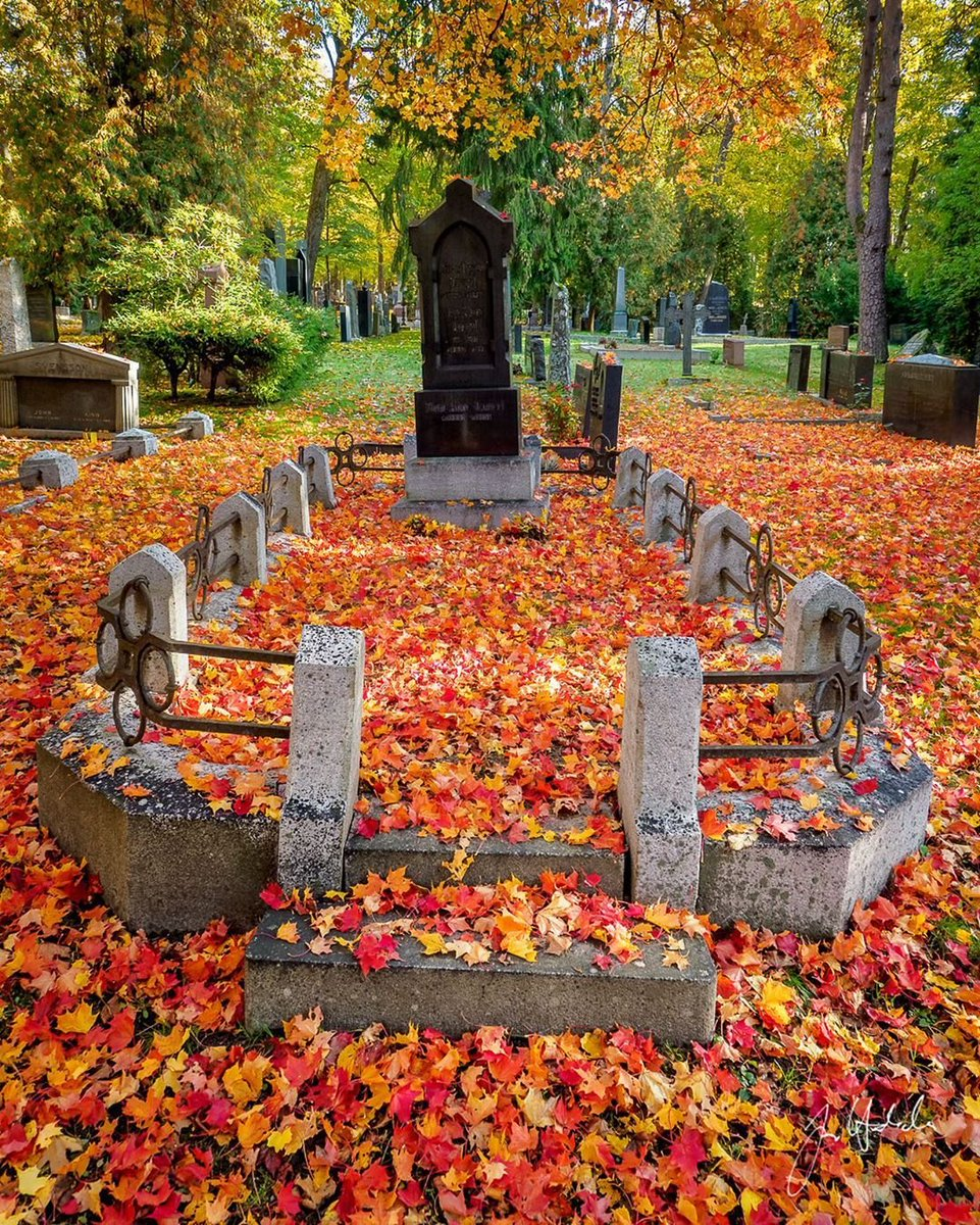 Posted @withrepost • @turku.kuva #hautausmaa #cemetery #graveyard #inmemoriam #master_gallery #project_necropolis #gottalove_a_ #fallcolors #fall #autumn #syksy