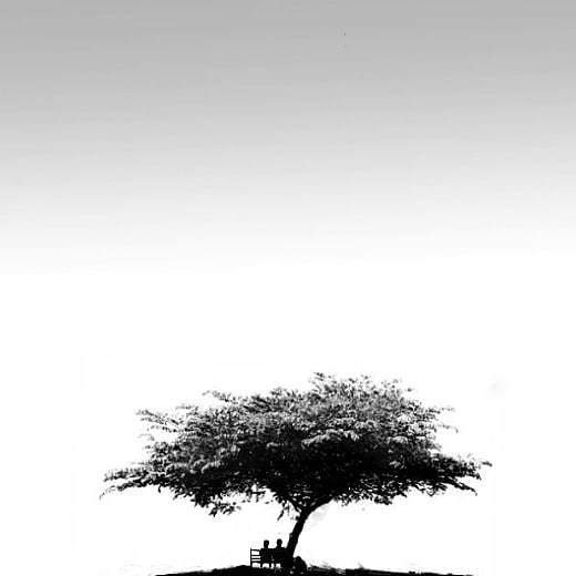 """""""Someone's sitting in the shade today because someone planted a tree a long time ago."""" ― Warren Buffett   📷: @jakasubagja  #photography #blackandwhite #madewithpixlr"""