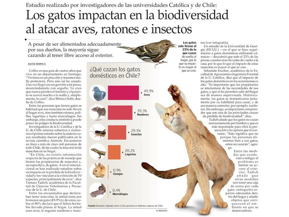 Una nota en @ElMercurio_cl sobre el estudio que realizamos con @Seba_Ciencia @RaulAlegriaM y Javiera Calderón-Amor sobre #BienestarAnimal #FaunaSilvestre y #TenenciaResponsable #Gatos el trabajo lo pueden leer completo en https://www.mdpi.com/2076-2615/9/10/745/htm…