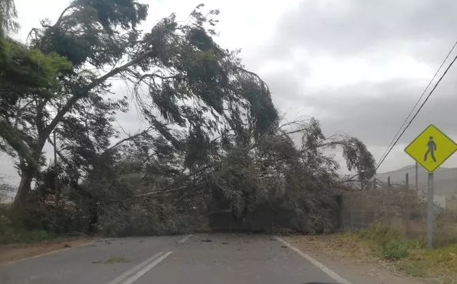 RT @elobservatodo [VIDEOS] Registros ciudadanos de fuertes vientos en La Serena y Coquimbo https://t.co/gi2lMSYl4O