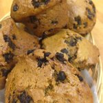 Pumpkin muffins at Solly's. Very Pumpkiny... No salt added, No Dairy!