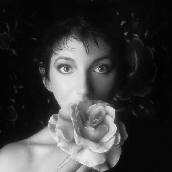 Has there ever been an artist who so emotively captures the mood and texture of the seasons as Kate Bush? Matthew Barton examines how Kate Bush made the perfect soundtrack to autumn as The Sensual World turns 30 tquiet.us/BushSense