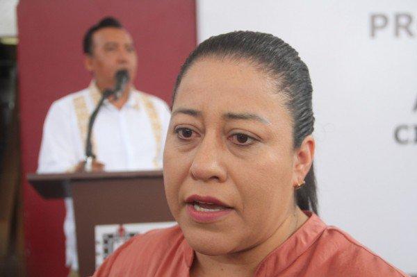 >> #Dengue afecta a #niños y #maestros en #educaciónbásica   #Xalapa     #Veracruz