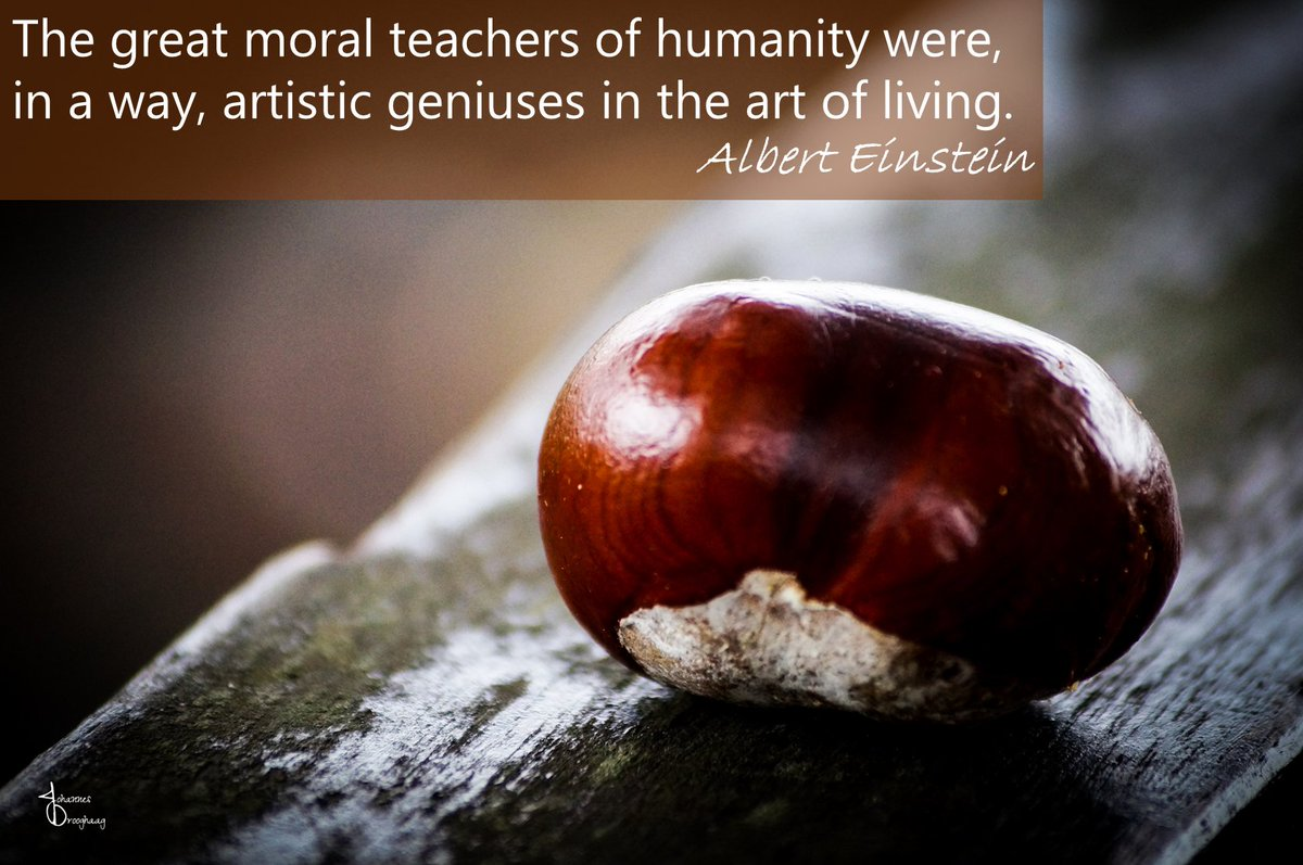 🔵 The great moral teachers of humanity were, in a way, artistic geniuses in the art of living. - Albert Einstein #AlbertEinstein #Einstein #QOTD #IQRTG #TuesdayThoughts #TuesdayMotivation #TuesdayMorning #Quote #Quotes @Dahl_Consult @NevilleGaunt @AdamRogers2030 @archonsec