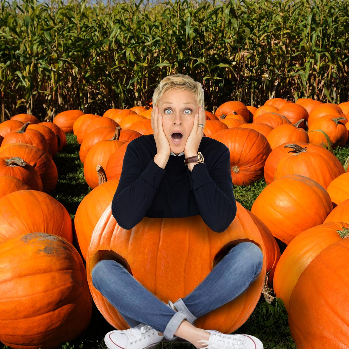 It's pumpkin spice season. There's a pumpkin, and I'm the spice. If you have a wonderfully horrible picture of your kid in a pumpkin, send it to me with #pumpkins4ellen !