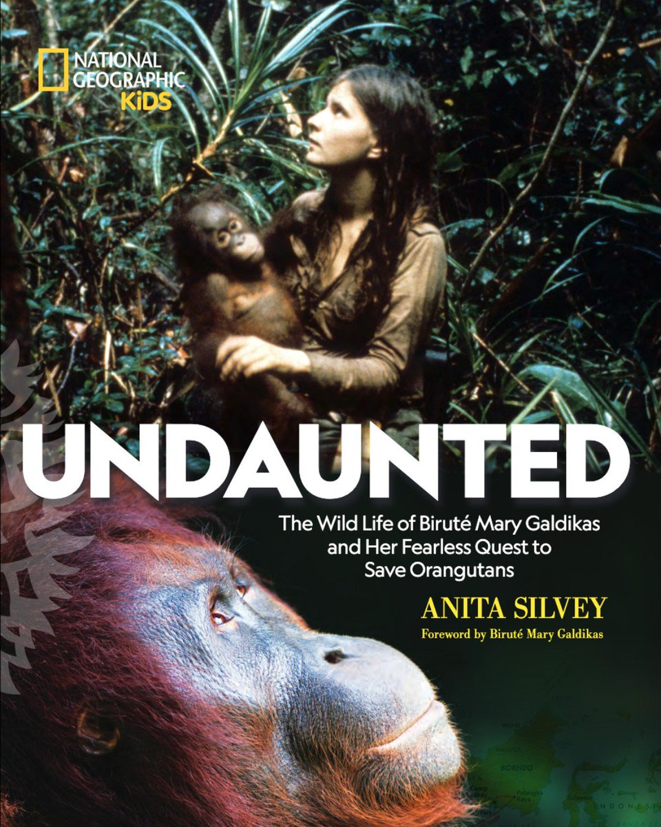 Undaunted is the story of an epic search & struggles that our founder, primatologist & conservationist Dr. Birute Galdikas, endured to study the world's most endangered great ape, the #orangutan. Shop now! Book+plush bundle also available. https://orangutan.org/shop/book-plush-bundle/ … #NatGeo