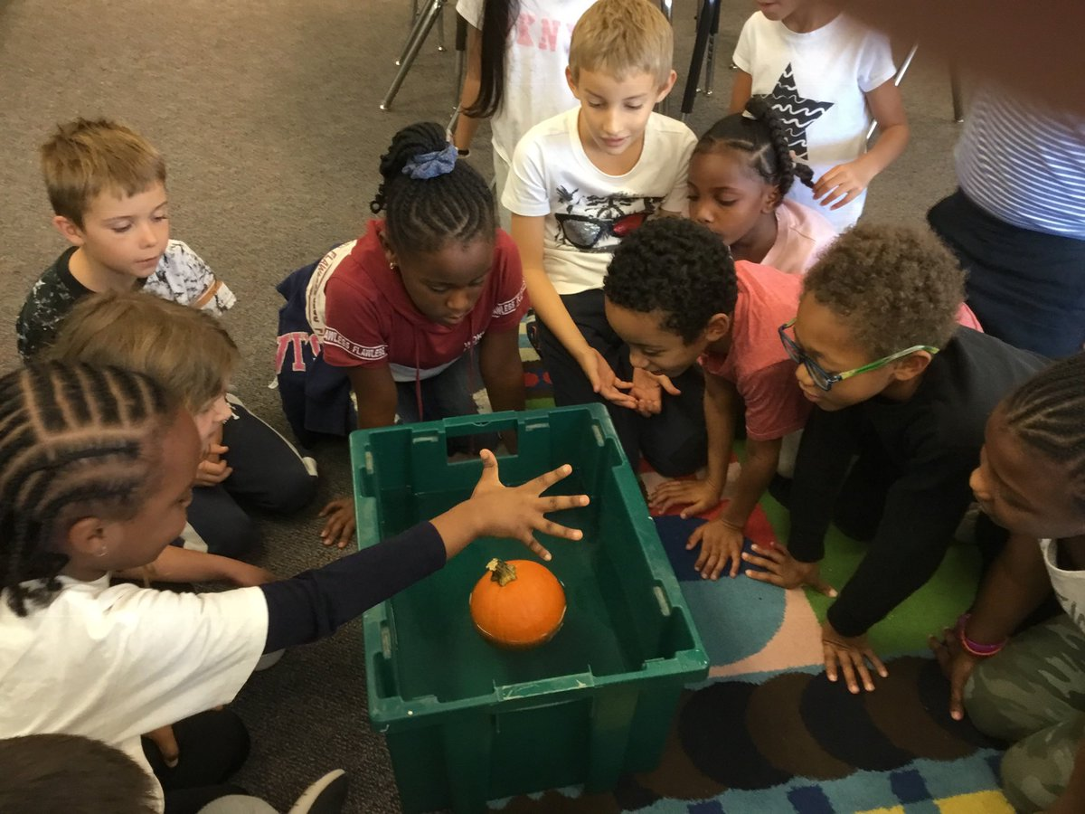 We asked ourselves in science if pumpkins floated and were very surprised when our hypothesis was proved wrong! <a target='_blank' href='http://search.twitter.com/search?q=hfbtweets'><a target='_blank' href='https://twitter.com/hashtag/hfbtweets?src=hash'>#hfbtweets</a></a> <a target='_blank' href='http://twitter.com/APSscience'>@APSscience</a> <a target='_blank' href='http://twitter.com/HFBAllStars'>@HFBAllStars</a> <a target='_blank' href='https://t.co/TNM8fZ32Ob'>https://t.co/TNM8fZ32Ob</a>