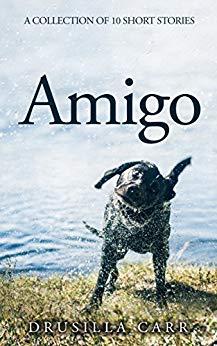 He`s  a #DOG  looking for somebody to #love. AMIGO  #SHORTSTORIES #AMAZON #KINDLE   http://hyperurl.co/Amigo #Amazon #Kindle    BTIWOB