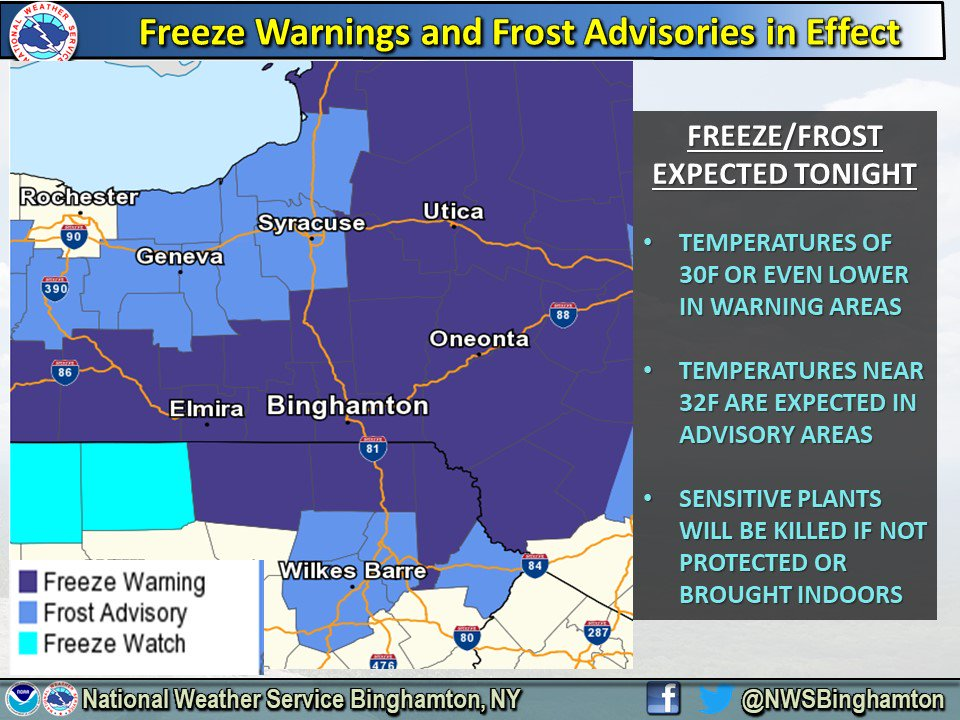 NWS issues Frost Advisory as temps plummet into 30s overnight