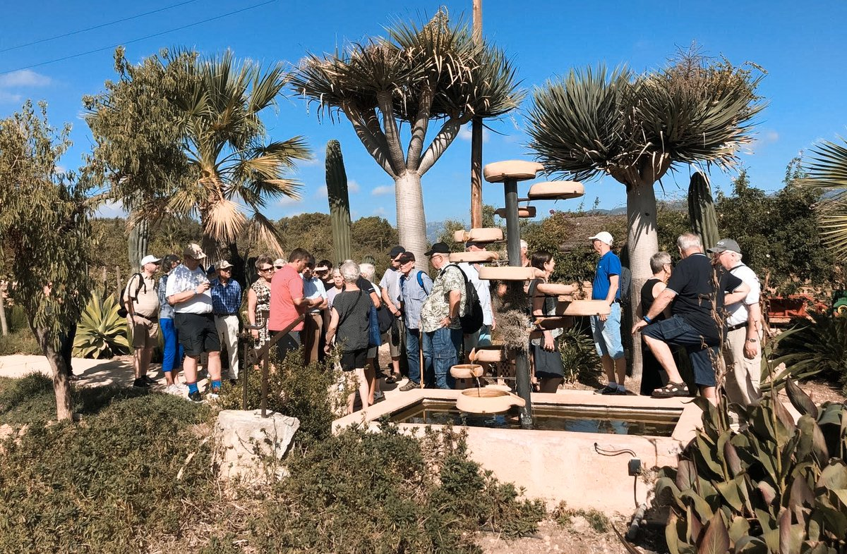 Our mate Sito gives us some photos of the excursion to @CellerRamanya where our clients discovered some secrets of the vineyards and the #Mallorcancountryside.  And you, where do you want to go today?  #cellerramanya #mallorca #excursion #onthebus #inlovewithmallorca pic.twitter.com/BcZ3ZdgWn1