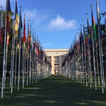 Image for the Tweet beginning: Continues this week @UNGeneva: Committee