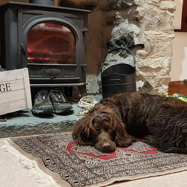 Day 1 done. Someone is tired and it's not just the dog. Luna is pleased there is a fireplace in our room. #doggraham #thisdogcan #sleepytime #bobgraham https://ift.tt/2nhIOvA