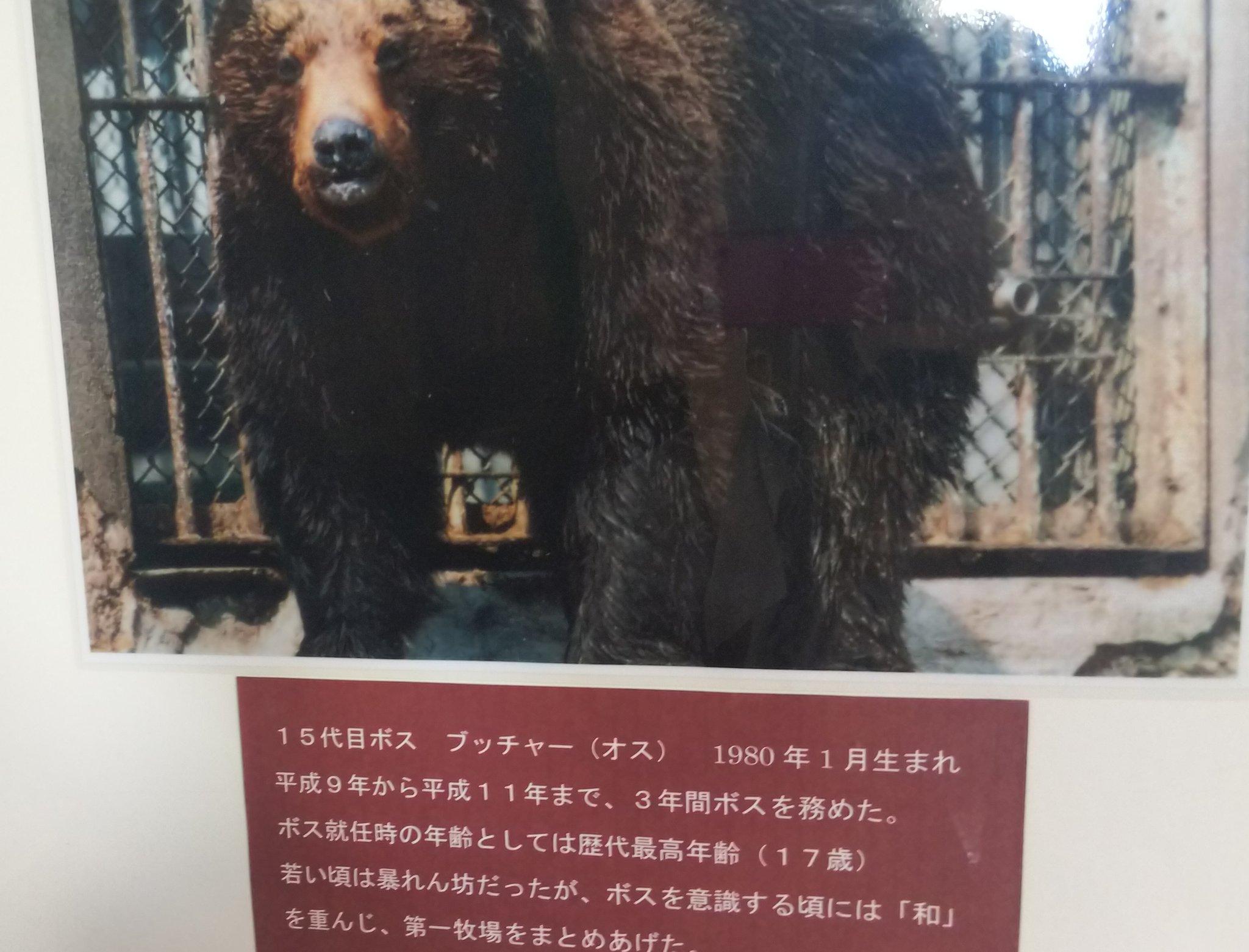 登別のクマ牧場の歴代ボスの紹介文を見た結果?ドキュメンタリー作れそうwww