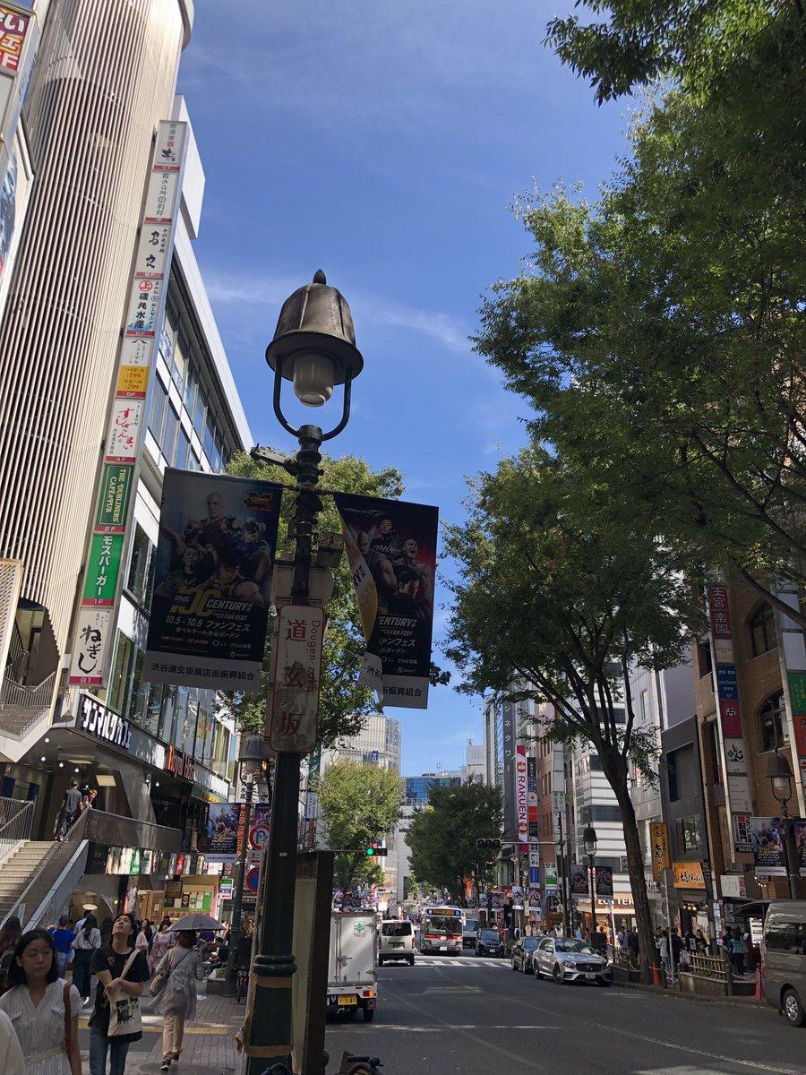 A 夏目 東京 の 冬