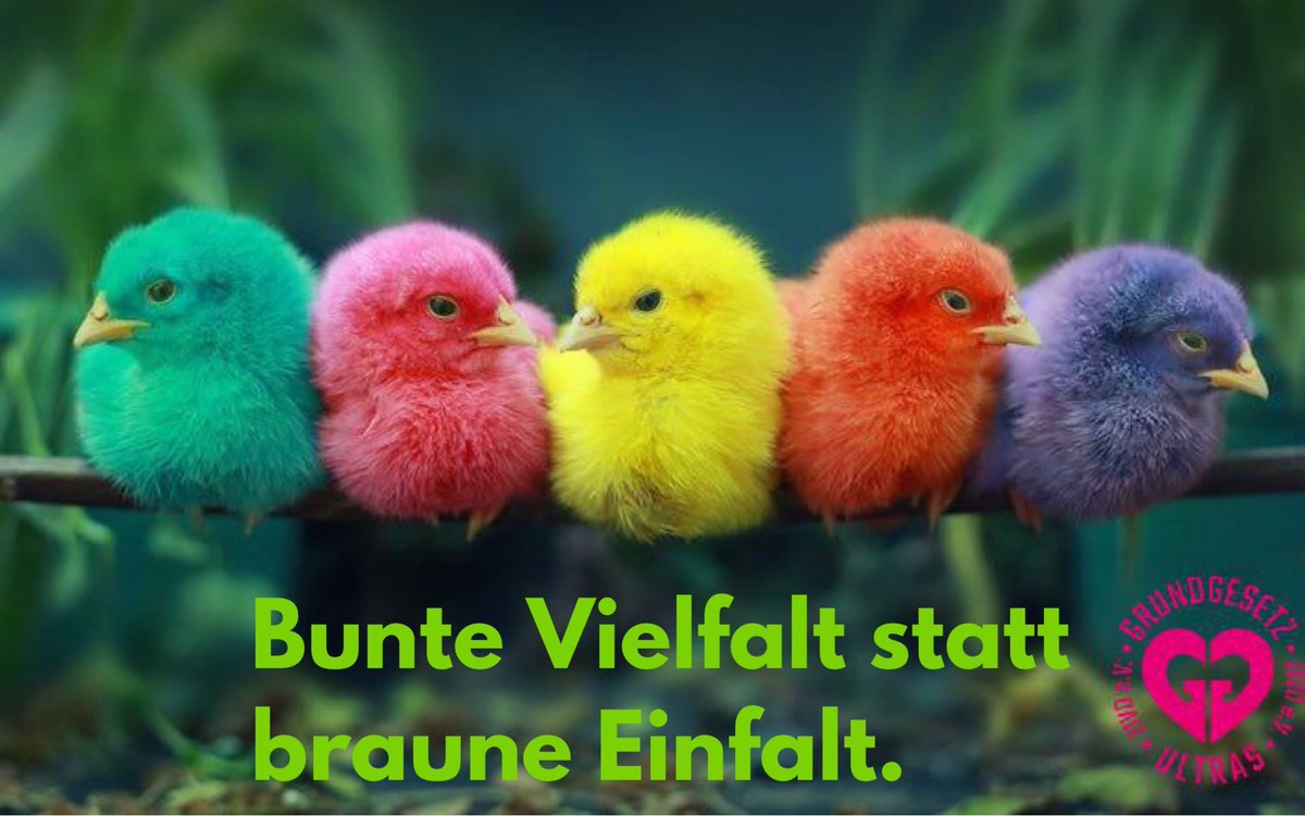 #WunDerBlokK #GGUltras unser Samstags #GGMotto #BunnteVielfaltStattBrauneEinfalt be colorful  be you, be amazing #StrongerTogether   #AntifaColour<br>http://pic.twitter.com/67z05K0nYb