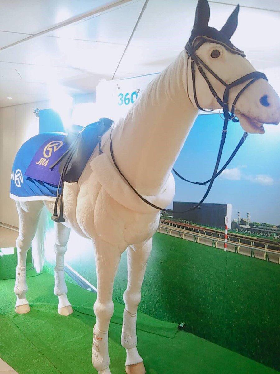 東京競馬場に新しくできるタピオカ屋さんのアンバサダーをミスミスター東大がやらせていただくことになりましたました👏店員としている日もあるよ、競馬来たら会えるかも🥰5日まで吉祥寺駅で馬ロボに会える告知イベントもやってるよ🐴#タピ活 #タピ馬 #東京競馬場