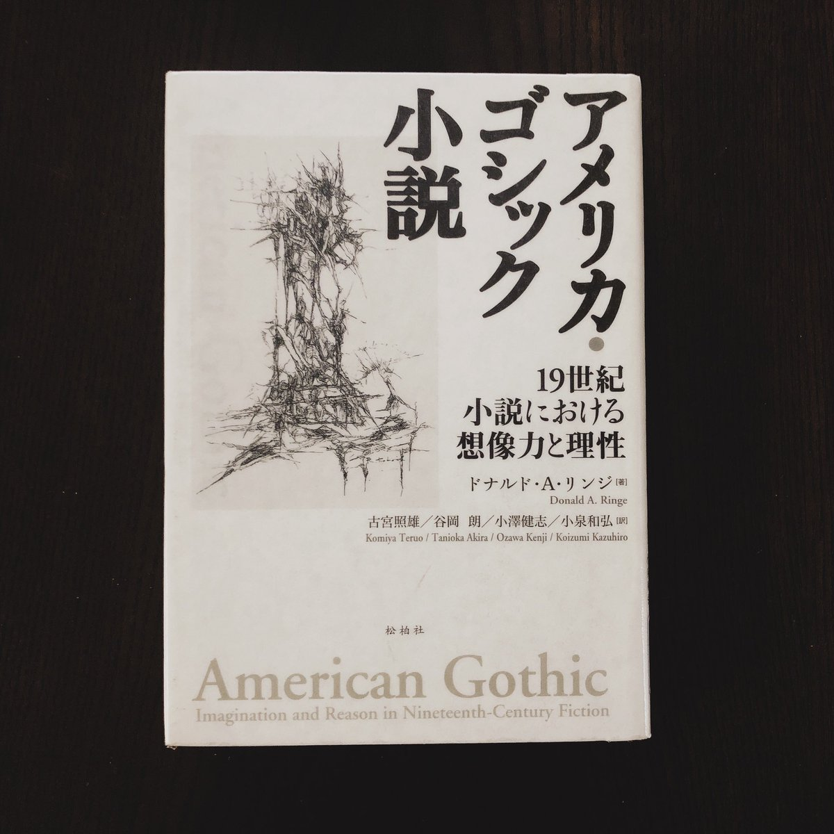 "টুইটারে かりさ: ""『アメリカ・ゴシック小説 19世紀小説 ..."