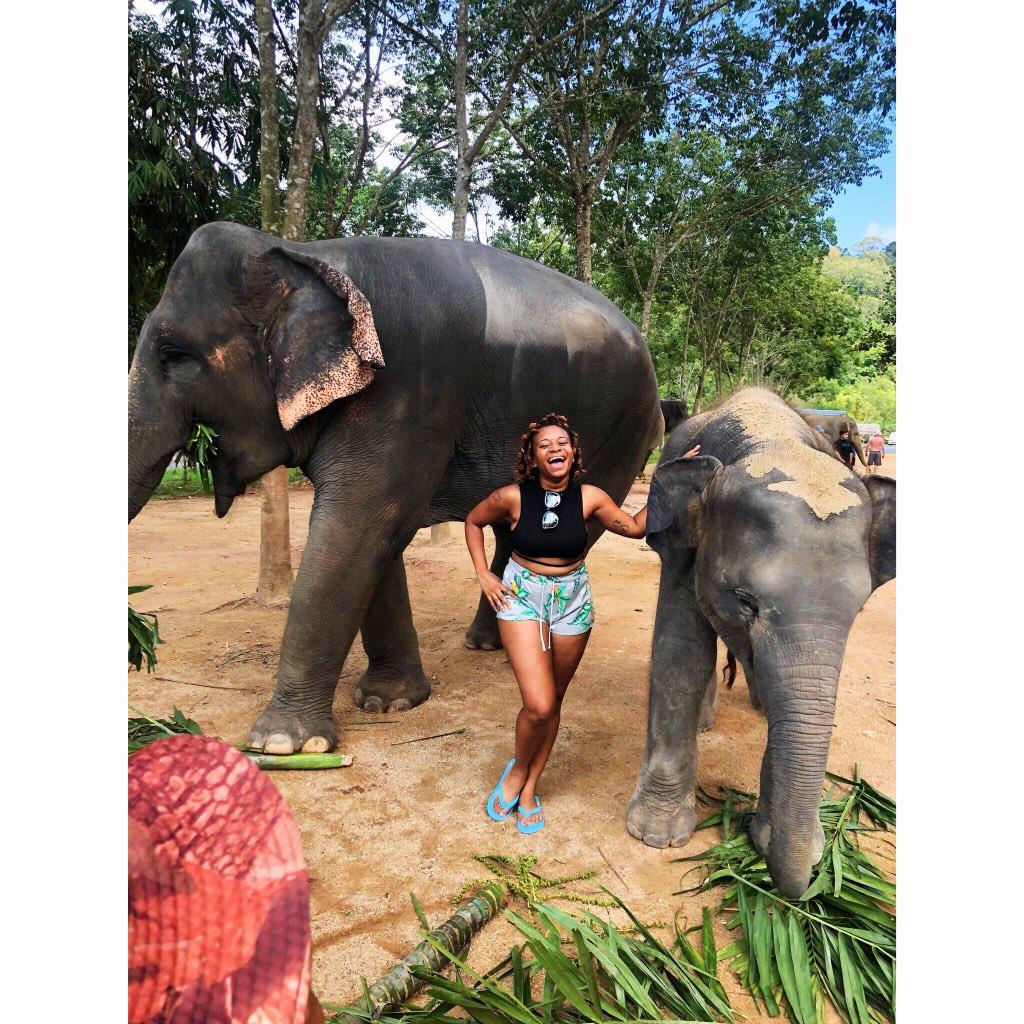 Shoutout to elephants man. They're so huge, but so gentle. #GreenElephantSanctuaryPhuket pic.twitter.com/BGWvfb949c