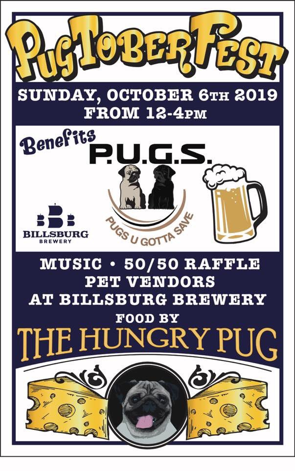 All the Pugs! And beer! And the last kegs of Oktoberfest!