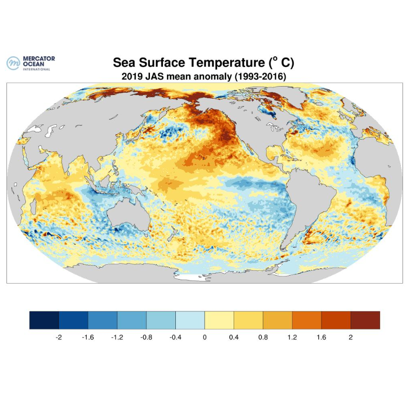 Data provided by @CMEMS_EU on sea surface #temperature anomalies for the July-Sept. 2019 period (compared to average from 1993-2016), corresponding to summer in the Northern hemisphere, show highest anomalies in the North Pole, & along the North West Coast of the #US & #Canada.