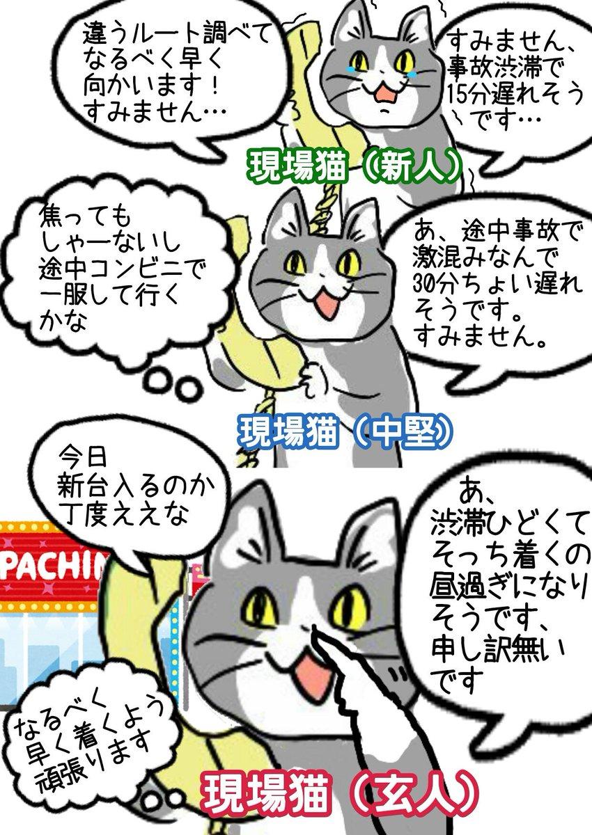 猫 ネタ ヨシ 元