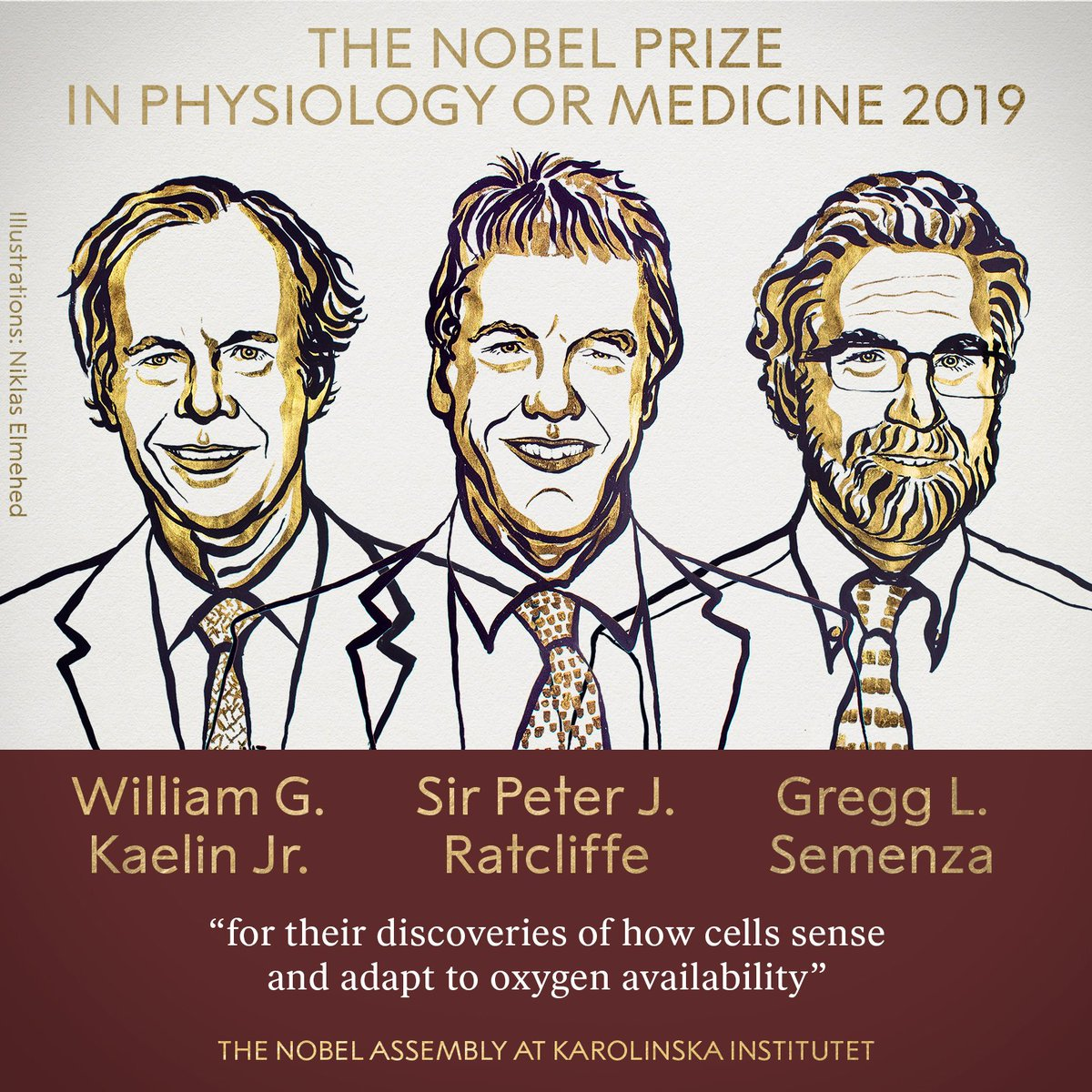 """Congratulations 💐💐❤️ The 2019 #NobelPrize in Physiology or Medicine has been awarded jointly to @DanaFarber William G. Kaelin Jr, Sir Peter J. Ratcliffe and @JohnsHopkins Gregg L. Semenza """"for their discoveries of how cells sense and adapt to oxygen availability."""""""