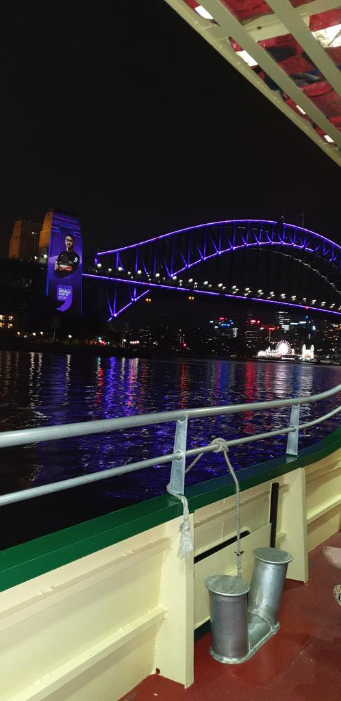 To show the Sydney Harbour Bridge pylon projection concerned.