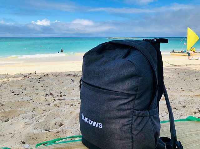 #tucows walk into a sandbar. Ahhh... The feeling to have the domains registered with us. #wetheherd @tucows_inc @opensrs @enom #epag @asciotech #domain #registrar ift.tt/2Vn9BTV