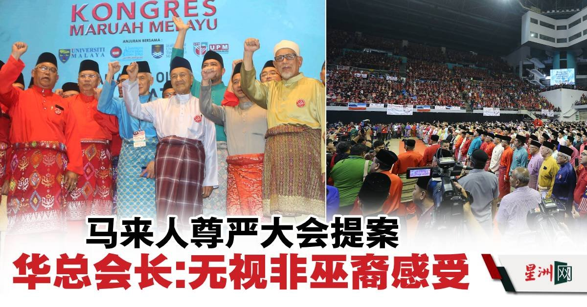 Image result for 馬來尊嚴大會