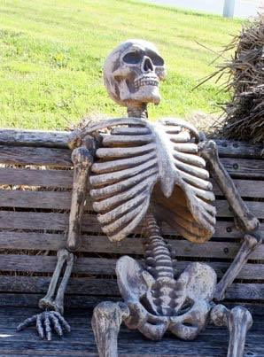 @Gunner16141154 Me, waiting to see what TJ has to say about this.