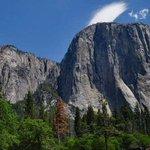 Image for the Tweet beginning: Springtime in Yosemite, California at