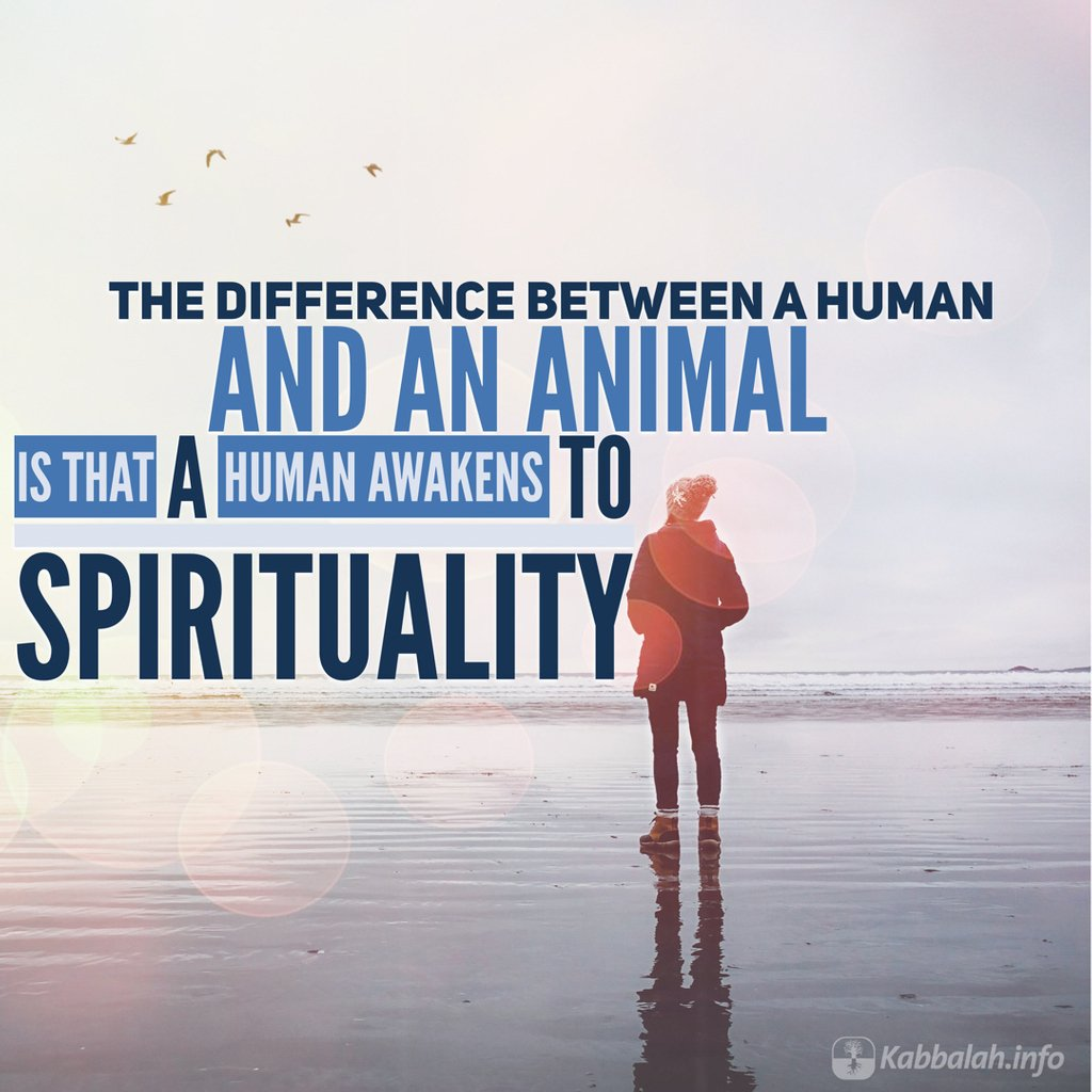 The difference between an animal and a human is that a human awakens to spirituality. Click link for more info and registration bit.ly/qp-Kabbalah-Co… #Spiritual #Spirituality #Education #Kabbalah #Meaningoflife