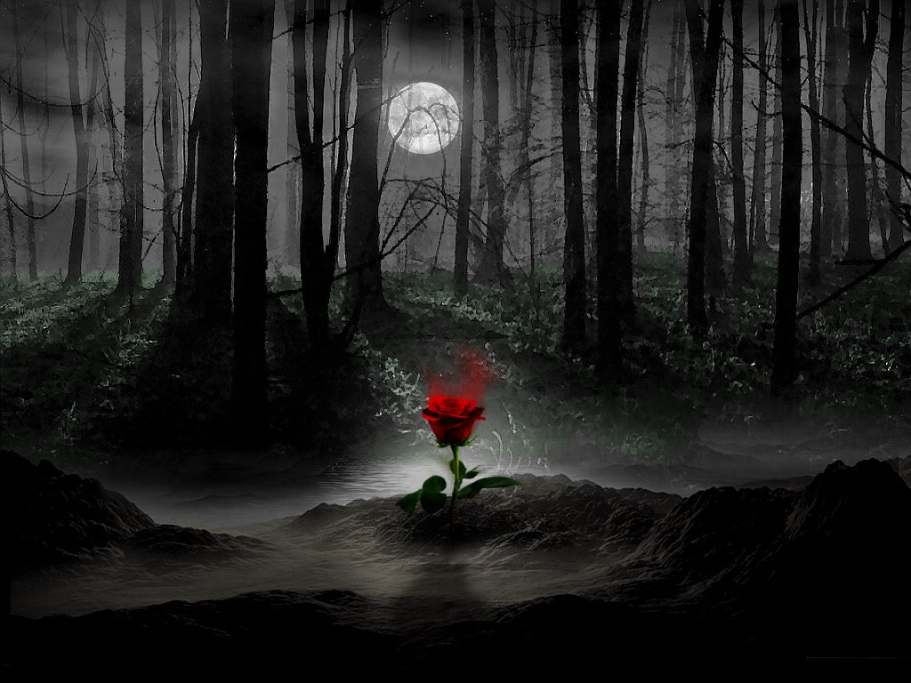 I am a forest, and a night of dark trees: but he who is not afraid of my darkness, will find banks full of roses under my cypresses. — Friedrich Nietzsche (Illustration by falcont)