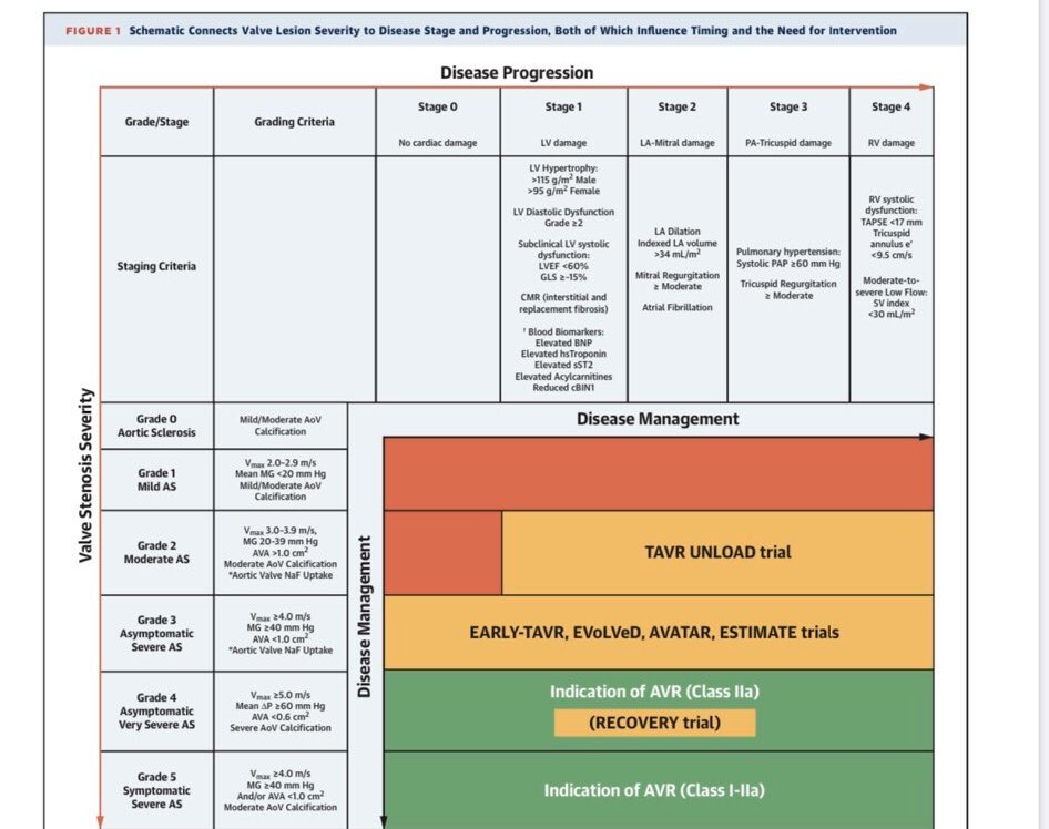 The concept of Grading AS Severity versus Staging Cardiac Damage