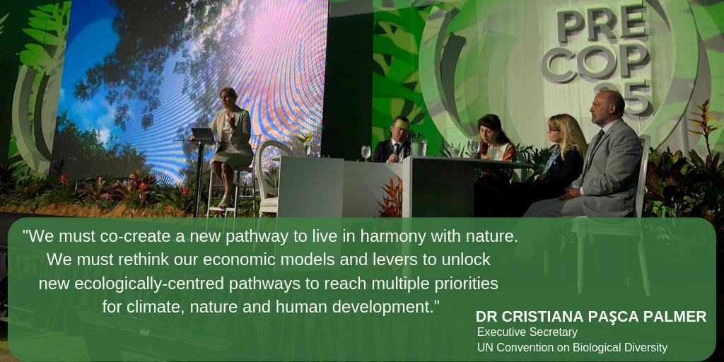 Speaking at the opening of #PreCOP25 in #CostaRica, CBD Exec Secy @CristianaPascaP calls for transformative change to build a shared future for all life on 🌍. #ClimateAction #NatureBasedSolutions