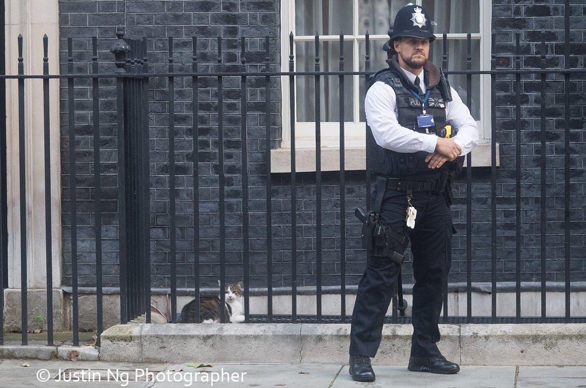 BORIS JOHNSON DIRTY PROTEST: Police place suspect behind bars (Pic @justin_ng)