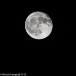 Image for the Tweet beginning: Warren CT, moon, handheld: day