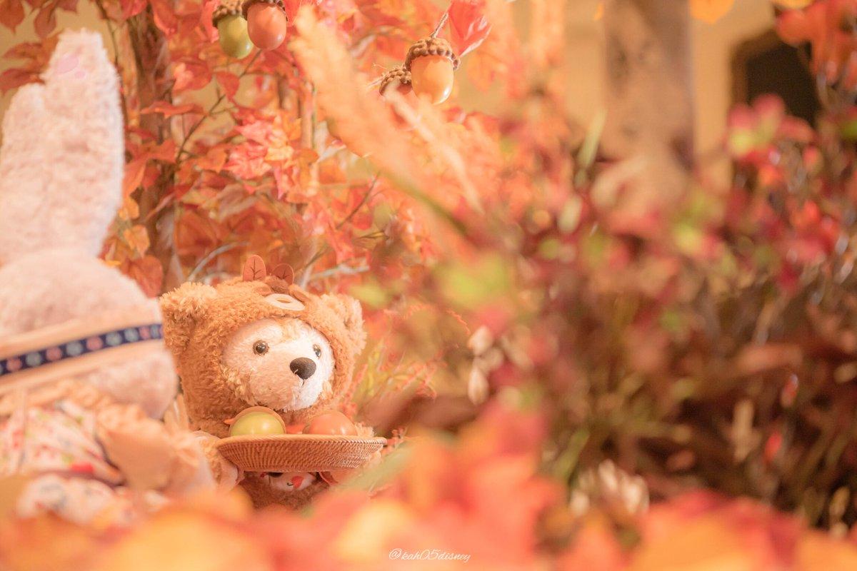 ディズニーシーのショーウィンドウやお店の飾り付けにも、もこもこで可愛い秋がやって来ていました🍁🍂